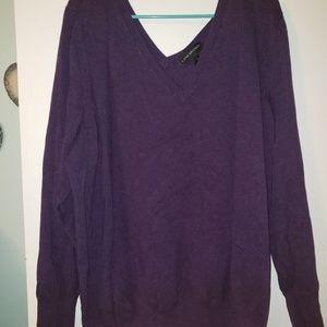 Lane Bryant Purple v-neck sweater